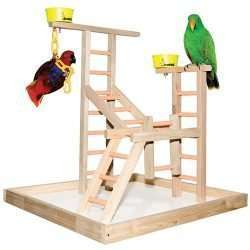 "20"" Bird Playland with Cups"