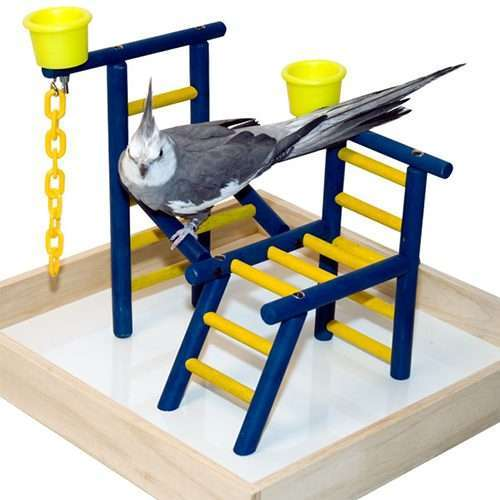 "14"" Bird Playland with Cups"