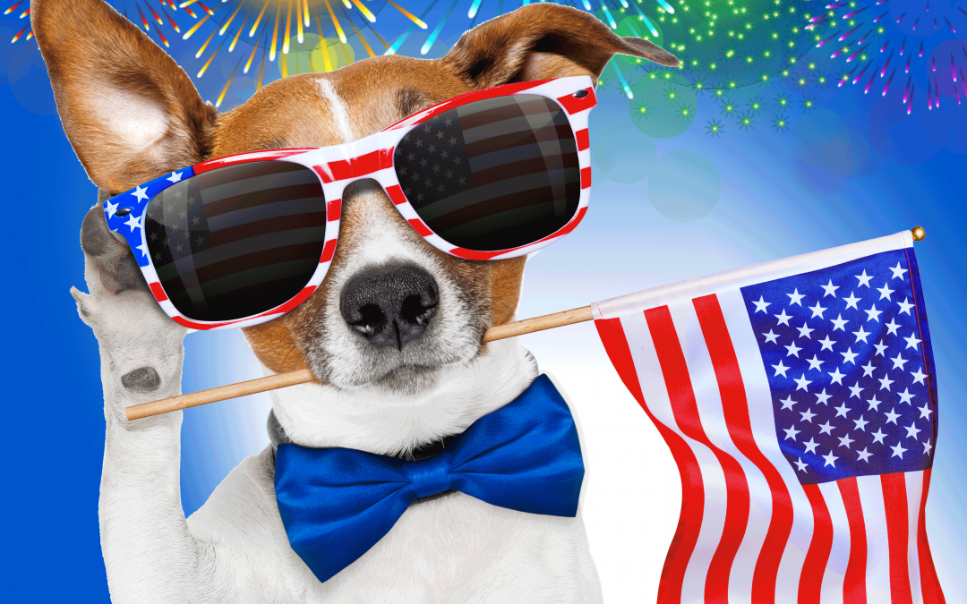 FIREWORKS AND YOUR DOG